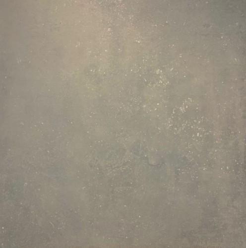 Vloertegels Squares Assago licht grijs, maat 70 x 70 cm. - 4919